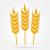 بسته بندی کشاورزی